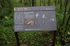 signage-at-the-site-of-the-laowanggong-official-residence-which-is-to-be-excavated-
