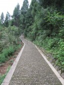 new-pebbled-path-for-visitors-leading-from-the-core-area-to-the-patriarch-temple-