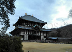 todaiji-side-view-2015