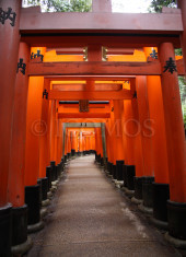 torii-from-inari-shrine-2015