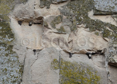 51-ashlars-on-the-facades-of-jvari-great-church-face-serious-erosion-problems