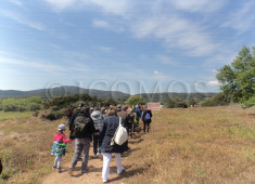 icomos-hellenicevent-2-archaeological-site-ramnous