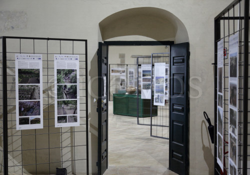 the-exhibitionidms-italy