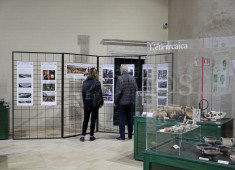 the-exhibitioninternational-day-for-monuments-and-sites-italy
